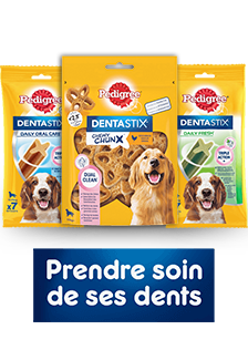 Pedigree® Dental Care Products